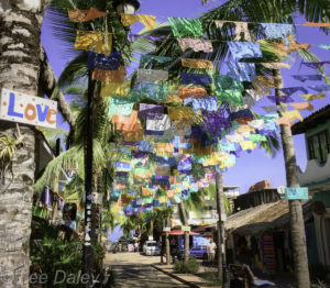 Sayulita flags, banners, love