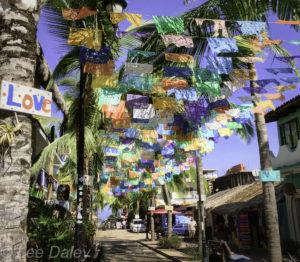 Sayulita flags, banners, love