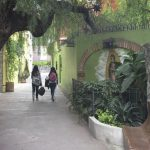 San Miguel de Allende at Hotel Matilda, mural walkway, Our Lady of Guadaloupe, Mexico