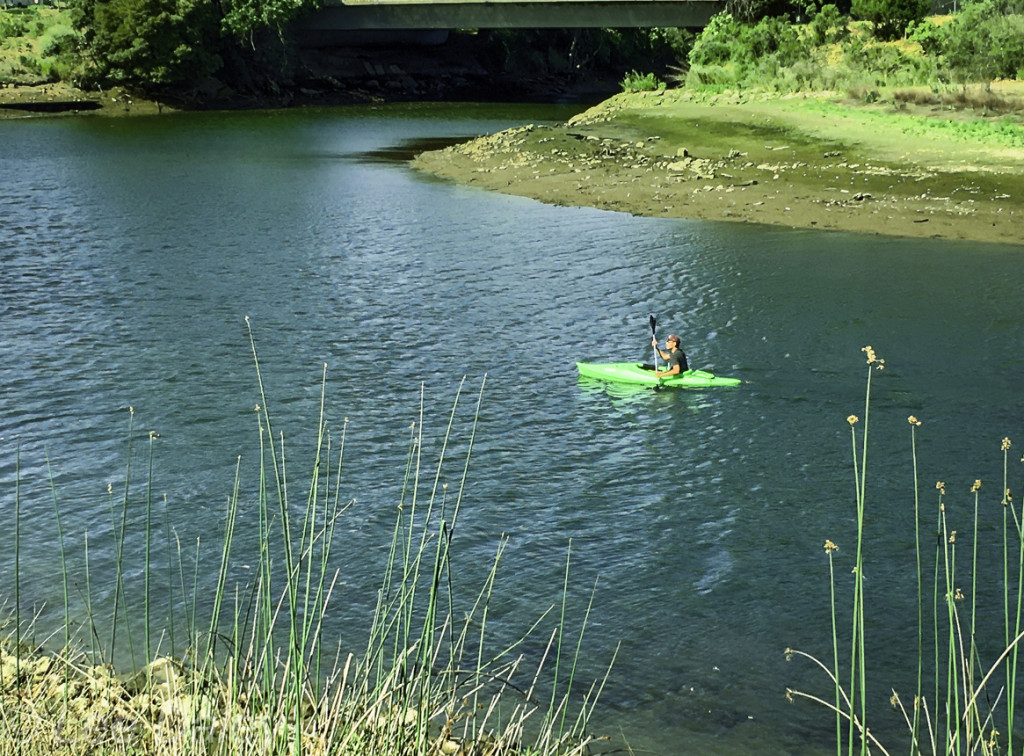 Kayaking on the Napa River, Downtown