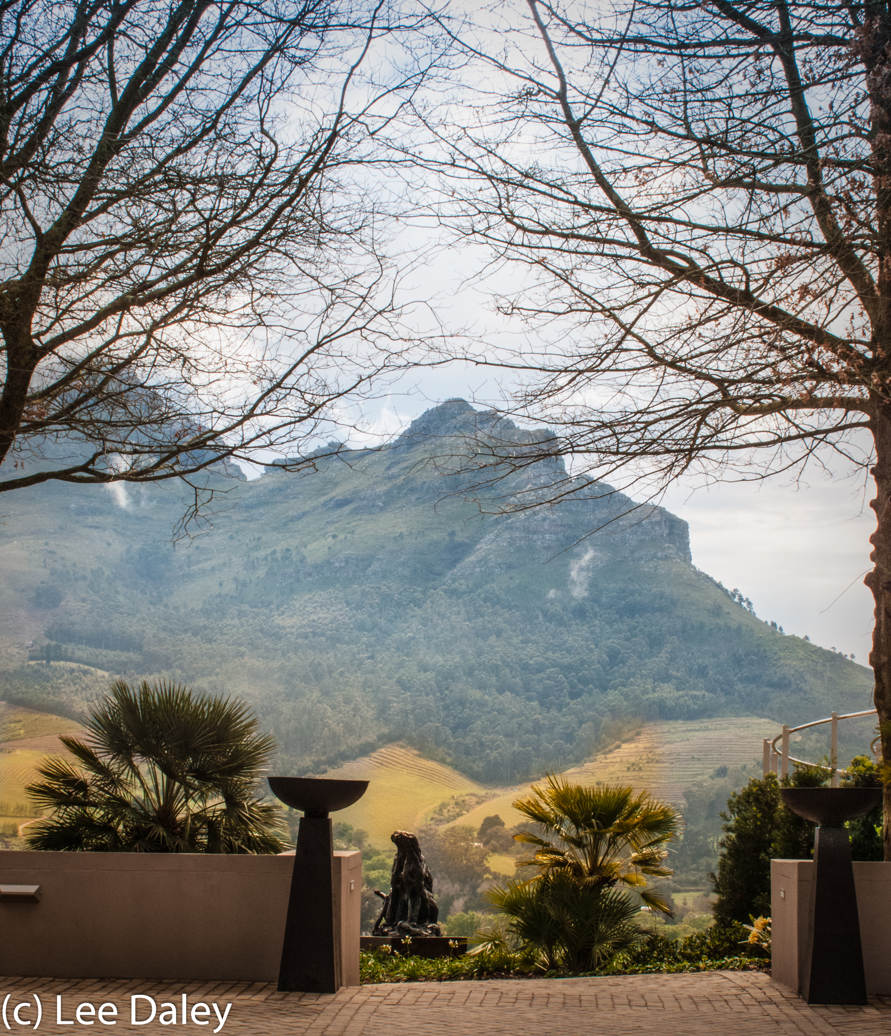 Cape Winelands, Exploring South Africa's Cape Winelands, Art in the Vineyards