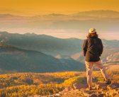 Utah Fall Color Gold