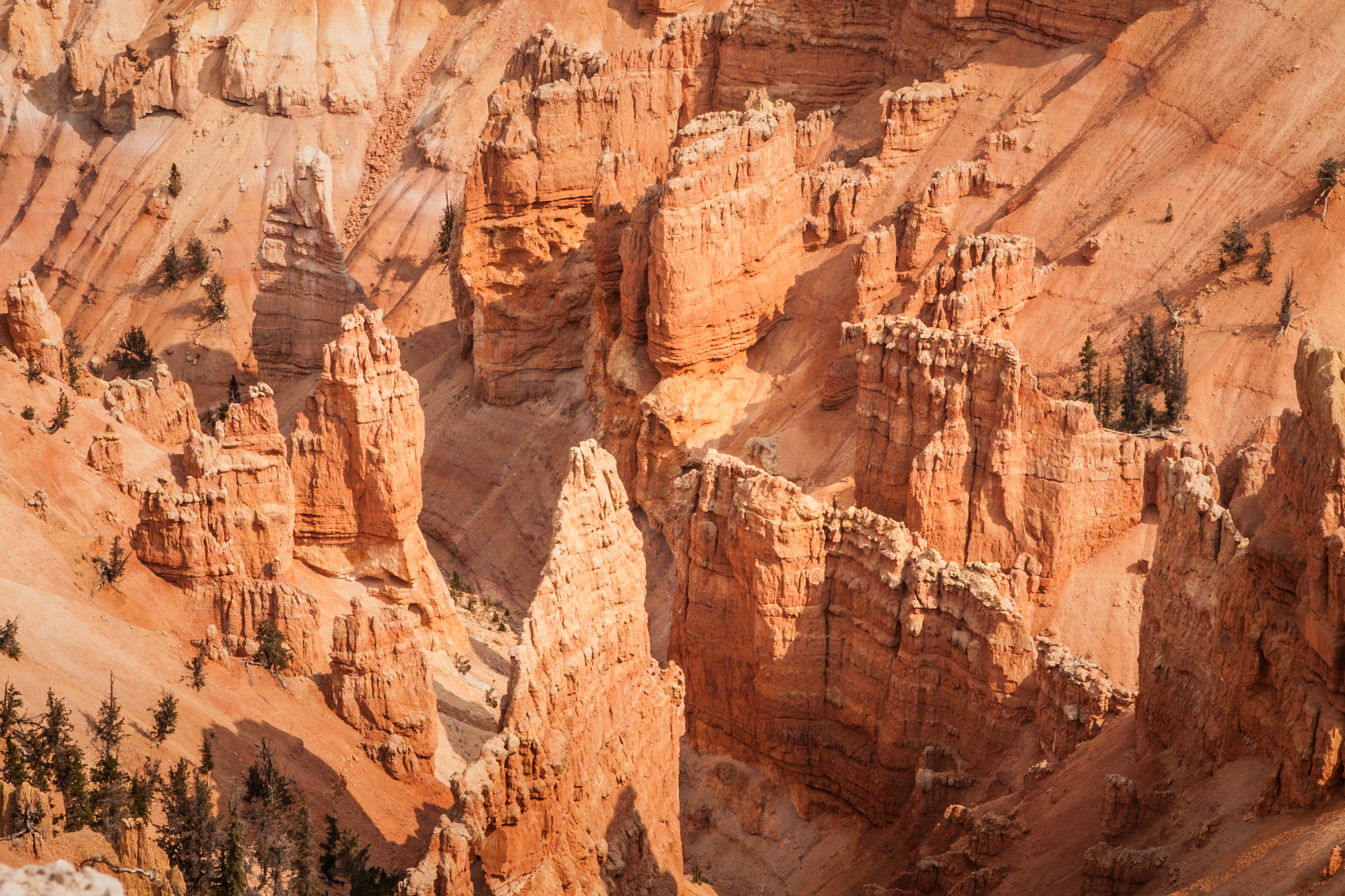"Point Supreme, Cedar Breaks, Giant, natural amphitheaters made of delicate geological formations called ""hoodoo,."" Finding Fall Color Gold in Zion National Park, The word ""hoodoo"" means to bewitch"