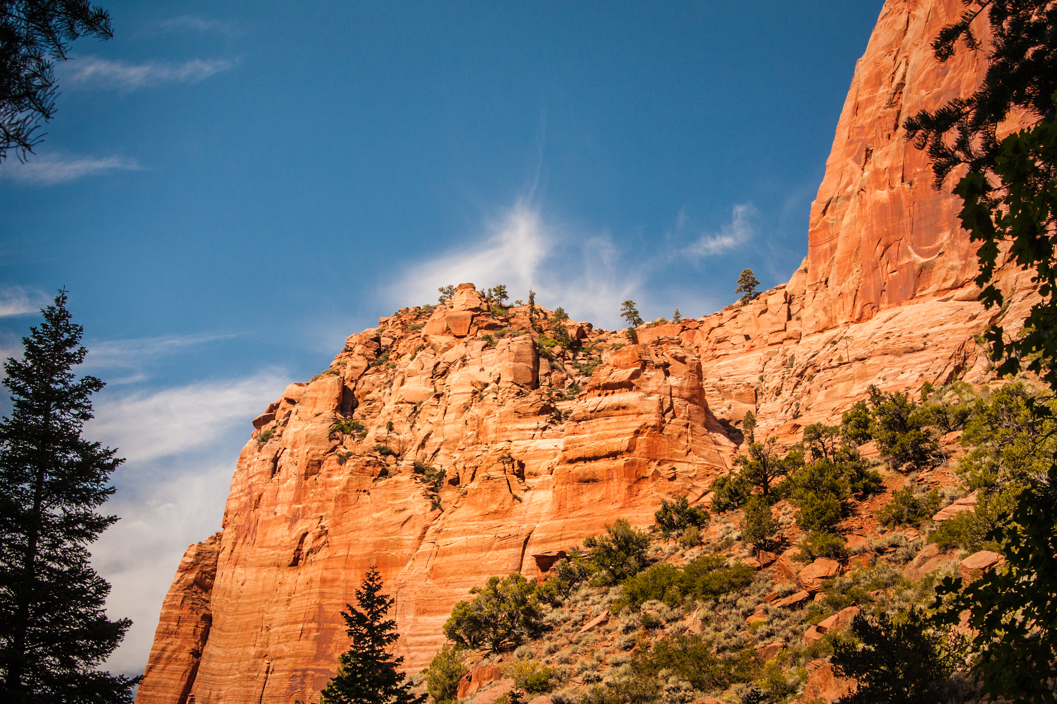 Bryce Canyon spires and hoodoos, Finding Fall Color Gold in Zion National Park