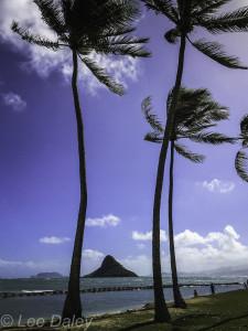 Oahu island, Oahu