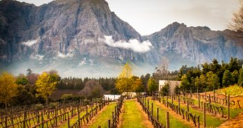 Exploring South Africa's Cape Winelands, South Africa, Cape Winelands