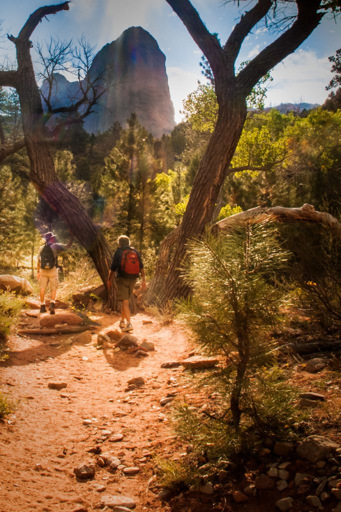 Finding Fall Color Gold in Zion National Park