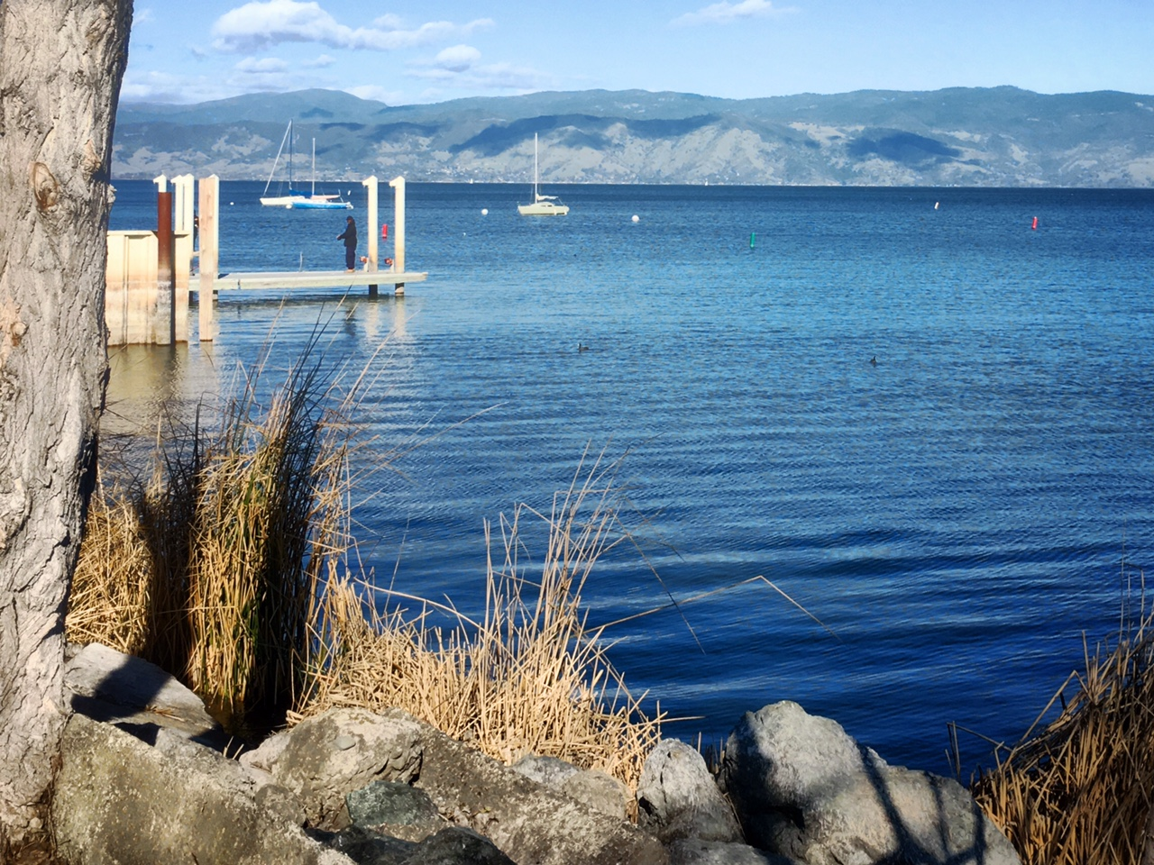 Lake County: A Sweet Spot Getaway north of San Francisco, Clear Lake