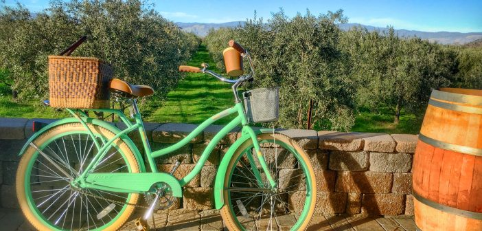 Lake County: A Sweet Spot Getaway north of San Francisco, Olive Groves at Chacewater Winery and Olive Mill,Olive Groves at Chacewater Winery and Olive Mill, Kelseyville, CA, Lake County