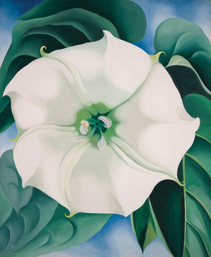 "White Flower #1 1932 Georgia O'Keeffe ""Jimson Weed"" Indianapolis Museum of Art, Indianapolis"