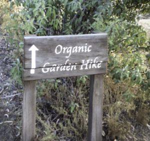 Sunrise Trail, La Cocina Que Canta, Pepin and Pollen would give rave reviews, Rancho La Puerta, Mexico