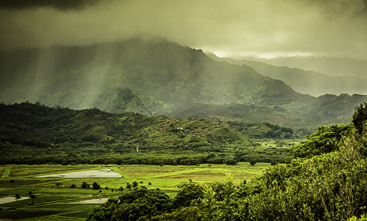 Romantic Kauai, Hawaii's Garden Isle, Mountain Mist near Poipu