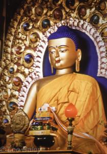 Buddha, Dharamsala, India